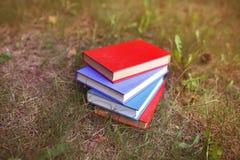 Une pile de livres fermés extérieurs Livres dans la forêt Photographie stock