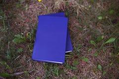 Une pile de livres fermés extérieurs Livres dans la forêt Photographie stock libre de droits