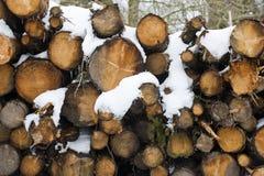 Une pile de neige a couvert des rondins Photographie stock