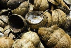 Une pile de noix de coco tropicale Shell sec image stock