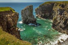 Une pile de roche en mer peuplée en multipliant Raverbill triche sur la côte de Pembrokeshire, Pays de Galles Photographie stock libre de droits