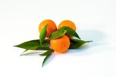 Une pile des branchements de mandarine Photographie stock libre de droits