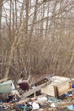 Une pile des déchets dans les bois Photographie stock libre de droits