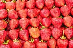Une pile des fraises image libre de droits