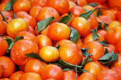 Une pile des mandarines mûres au marché d'un fermier Images libres de droits