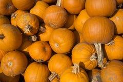 Une pile des potirons oranges Photographie stock