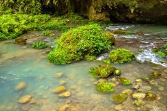 Une piscine de courant dans une montagne profonde Photos libres de droits