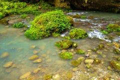 Une piscine de courant dans une montagne profonde Image libre de droits