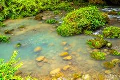 Une piscine de courant dans une montagne profonde Photo libre de droits