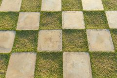 Une place d'herbe verte et de patio concret blanc lapide la place dans la décoration extérieure, plancher à carreaux d'herbe photographie stock libre de droits