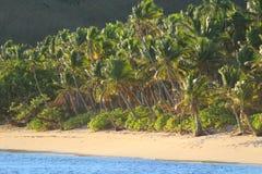 Une plage de sable en île tropicale, Fidji photo stock