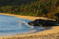 Une plage de sable en île tropicale, Fidji photographie stock libre de droits