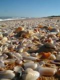 Une plage de vacances Images libres de droits