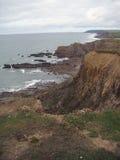 Une plage rocheuse a tiré avec l'herbe dans le premier plan Image stock