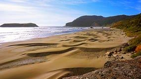 Une plage sablonneuse sur la côte célèbre de l'Orégon Images libres de droits