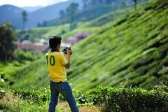 Une plantation de thé de photographe en Cameron Highland Image libre de droits