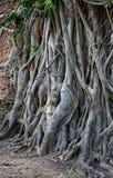 Une plus de vue du temple délabré en région de Wat Mahathat Images stock