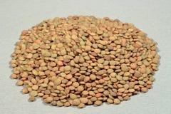 Une poignée de lentilles espagnoles brunes sur le fond gris Photo stock