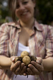 Une poignée de sourire de fixation de femme de pommes de terre Images stock