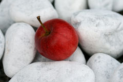 Une pomme Images stock