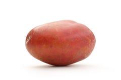 Une pomme de terre entière fraîche photo stock