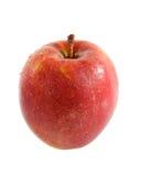 Une pomme rouge au-dessus du fond blanc Image libre de droits