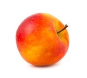 Une pomme rouge-jaune de couleur Images stock
