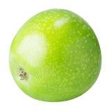Une pomme verte d'isolement sur un fond blanc Photographie stock libre de droits