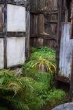 Une porte en bois brune images libres de droits