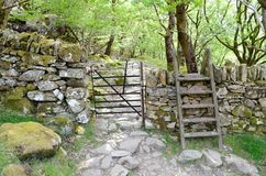 Une porte en métal et un montant en bois par un mur en pierre, mènent dans la forêt images stock