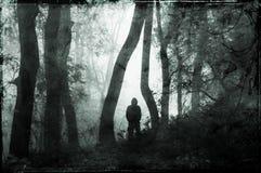 Une position effrayante à capuchon solitaire de figure dans une forêt, silhouettée contre la lumière Sur un brumeux, jour d'hiver images stock