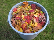 Une poubelle de déchets en plastique complètement de jaune et de feuilles lues Image libre de droits