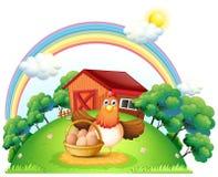Une poule avec un panier d'oeuf à la ferme Photo libre de droits