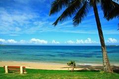 Une présidence vide et un palmier en plage de Noumea Photo stock