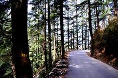 Une promenade à rappeler Image stock