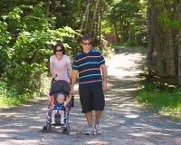 Une promenade dans les bois Photographie stock libre de droits