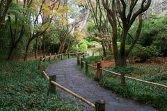 Une promenade dans les jardins de thé japonais Photo stock