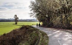 Une promenade de matin dans l'horizontal d'automne de l'Orégon Photographie stock libre de droits