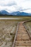 Une promenade de montagne Photographie stock libre de droits