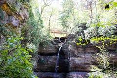 Une promenade en nature photos stock