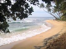 Une promenade sur la plage Images libres de droits