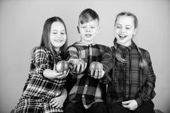 Une qualit? plus organique Peu enfants tenant les pommes organiques rouges Les petits enfants ont plaisir ? manger des fruits org photo stock