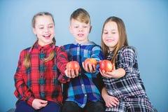 Une qualit? plus organique Peu enfants tenant les pommes organiques rouges Les petits enfants ont plaisir ? manger des fruits org photo libre de droits