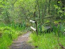 Une réserve naturelle paisible Images libres de droits