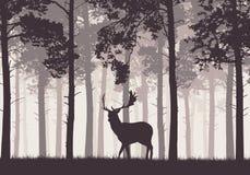 Une rétro forêt conifére avec une silhouette d'un cerf commun Photos libres de droits