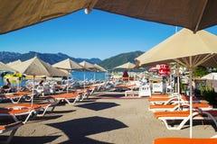 Une rangée des chaises longues et des parapluies bleus dans un arrangement tropical Photo libre de droits