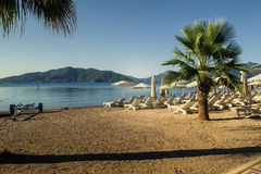 Une rangée des chaises longues et des parapluies bleus dans un arrangement tropical Photographie stock