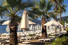 Une rangée des chaises longues et des parapluies bleus dans un arrangement tropical Photos libres de droits