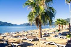 Une rangée des chaises longues et des parapluies bleus dans un arrangement tropical Photo stock