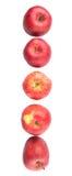 Une rangée des pommes rouges VII Images libres de droits